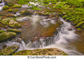 Little River - Picturesque, horse-shoe rapids along the...