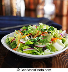 garden salad with romaine lettuce and other vegetables