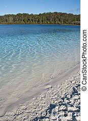 Lake Mc Kenzie, Fraser Island, Australia, August 2009 - The...