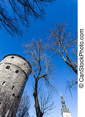 Sky of old Tallinn - View of fortress towers and church on...
