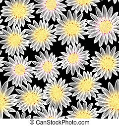 White daisy flower in a seamless pattern