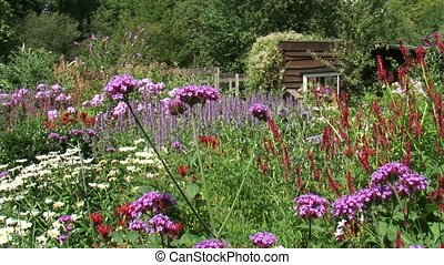 Flower garden with wooden shed + pan blooming border with...