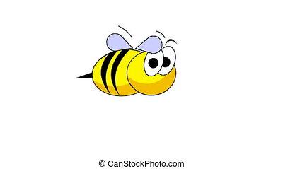 Bee - Funny bee