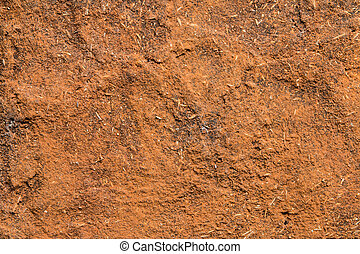 Red soil wall texture - Closeup of the red soil wall texture