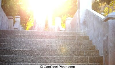 Video ascending stairs and a large tree with sunlight in...