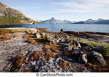 Coast Norway - The coast in northern Norway with mountains,...