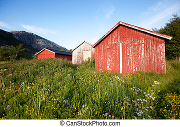Boat House Norway - A group of old boat houses on the coast...