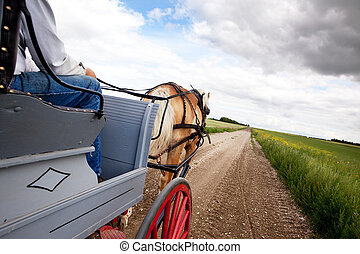 Horse and Cart - A horse pulling a cart accross a beautiful...