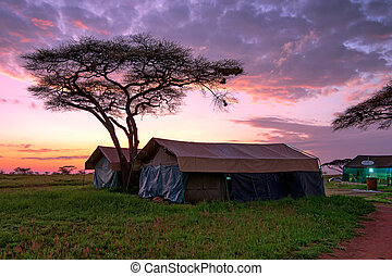 Tented camp in savannah - Overnight in tents in savanna camp...