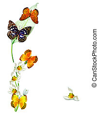 branch of flowers and butterflies isolated on a white...