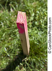 wooden pole for Field survey - red colored wooden pole for...
