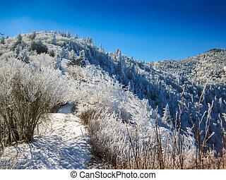 Snow Covered Mountain Trail - The Appalachian Trail near...