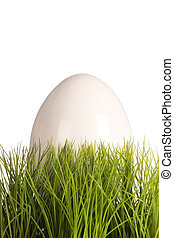 White easteregg in easter grass