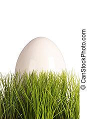 White easteregg in easter grass