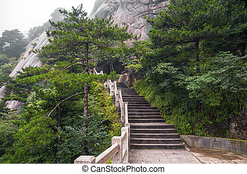 Huangshan mountain stairs path into forest - Mountain stairs...