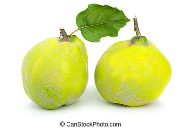 Two fresh quince fruits isolated on the white background