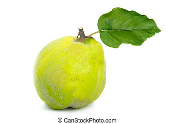 Single fresh quince with leaf isolated on the white...