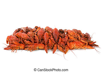 Pile of boiled crawfishes isolated on the white background
