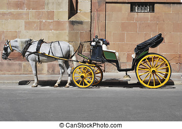 Horse carriage - Traditional horse carriage in Malaga....