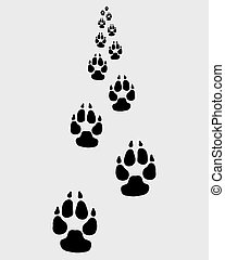 footprints of dog - Black footprints of dog, vector...
