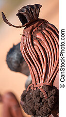 Himba woman hair closeup - Rear view of himba woman hair,...