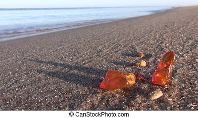 amber pieces stone on sea beach - natural golden amber...