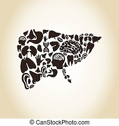 Liver made of body parts A vector illustration