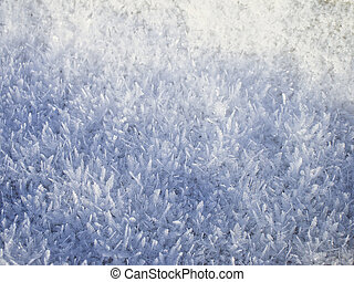 Winter snow texture