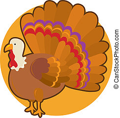 Thanksgiving Turkey - A turkey standing with it\'s tail...