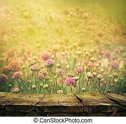 Flower background - Spring background with tabletop Flowers...