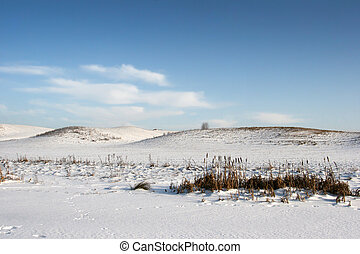 snowy hills in the winter panorama,