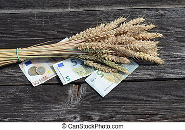 ripe wheat ears bunch and euro money banknote agriculture...