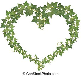 Heart symbol formed from ivy.