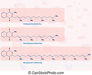Vitamin K - Illustration that shows the molecular structures...
