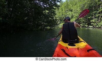 strong elder man rows kayak among mangrove trees