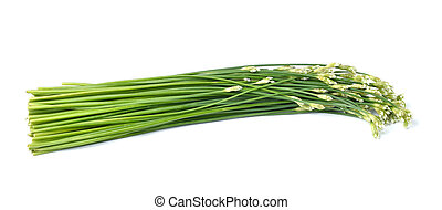 onion flower isolated on white background