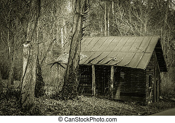 Abandoned Shack - Shack abandoned in the forest along an...