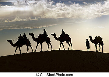 Camel riding in Thar Desert - JAISALMER, INDIA - FEB 26:...