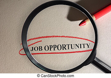 Job Opportunity search - Job Opportunity text circled in red...