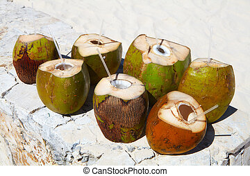 Coconuts on the tropical beach. An exotic fruit