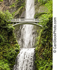 Multnomah Falls in Portland Oregon