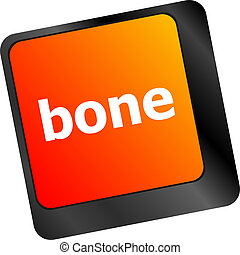 bone button on computer pc keyboard key