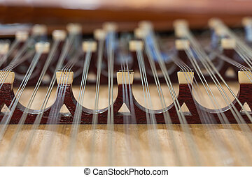 Part of the Chinese instrument ; Yang Chin
