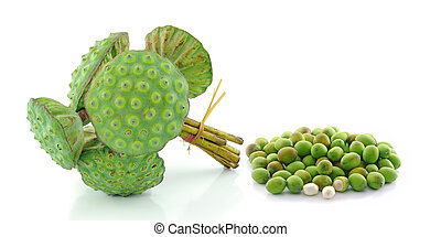 lotus seed pod on white background