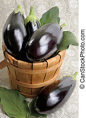 Eggplants - Eggplants of black colour in a wooden bucket