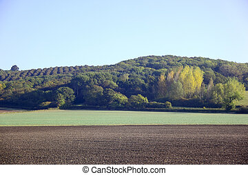 early morning landscape 2 - early morning light on arable...