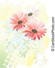 gerbera watercolor drawing, vector illustration