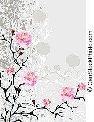 sakura blossom, grey background