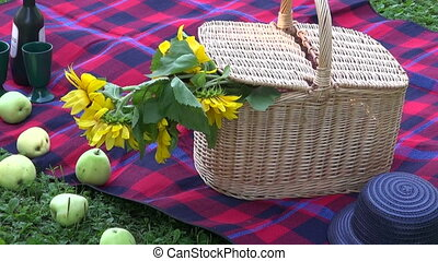 Picnic Basket on green park grass on sunny day
