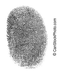 Black fingerprint isolated on white - Black fingerprint...